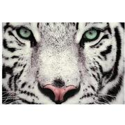 Tiger Set of 3 Acrylic Wall Art  alternate image, 3 of 4 images.