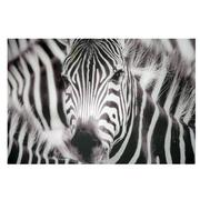 Zebra Set of 3 Acrylic Wall Art  alternate image, 3 of 4 images.