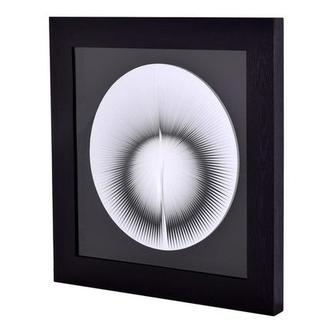 Optic Illusion II Shadow Box