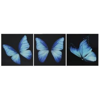 Morpho Set of 3 Acrylic Wall Art