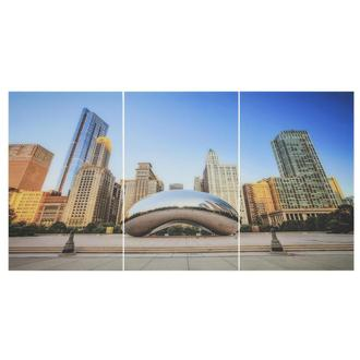 Bean Set of 3 Acrylic Wall Art