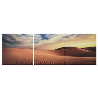 Sahara Set of 3 Acrylic Wall Art